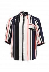 Купить Блуза Dorothy Perkins Curve мультиколор DO029EWRAR63