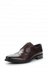 Купить Туфли Guido Grozzi коричневый GU014AMVSX03 Россия