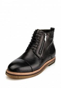 Черные мужские ботинки ditto из натуральной кожи