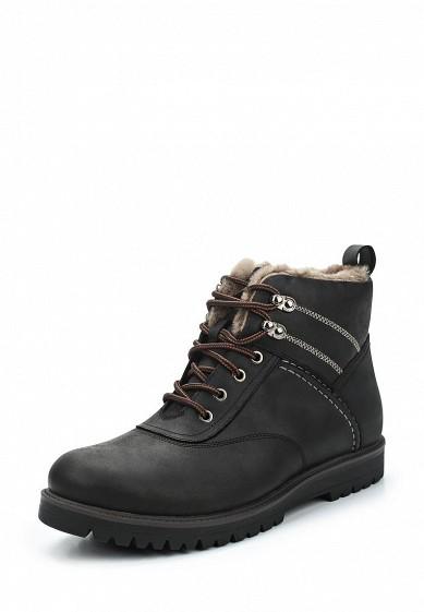 Купить Ботинки Rosconi черный RO036AMVIY73 Россия