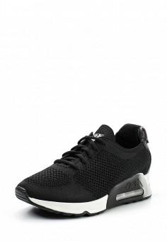 Кроссовки, Ash, цвет: черный. Артикул: AS069AWUIT47. Премиум / Обувь / Кроссовки и кеды