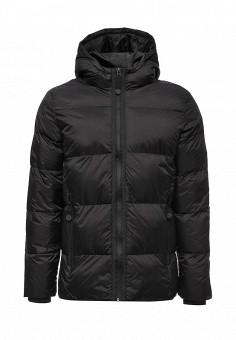 Куртка утепленная, Befree, цвет: черный. Артикул: BE031EMVDD55. Мужская одежда / Верхняя одежда / Пуховики и зимние куртки