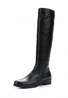 Сапоги, Der Spur, цвет: черный. Артикул: DE034AWWIZ78. Женская обувь / Сапоги / Сапоги