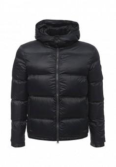 Пуховик, EA7, цвет: черный. Артикул: EA002EMUEE53. Мужская одежда / Верхняя одежда / Пуховики и зимние куртки