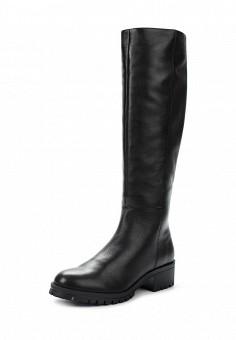 Сапоги, Ralf Ringer, цвет: черный. Артикул: RA084AWVSB85. Женская обувь / Сапоги